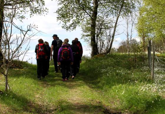 Pilgrimage - from Munkeby to Stiklestad