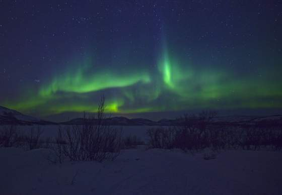 Northern Lights Safari