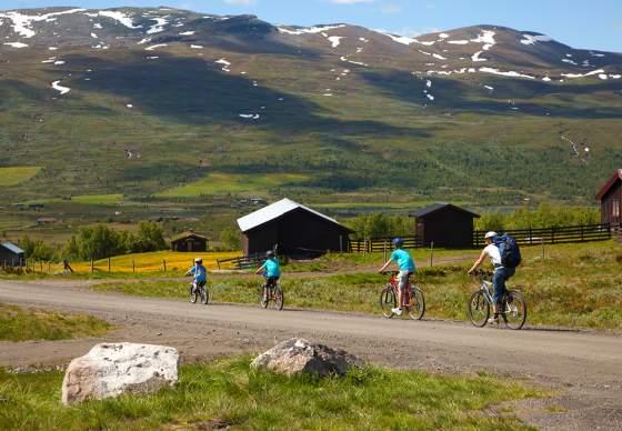 Mjølkevegen Family Route (52 km)