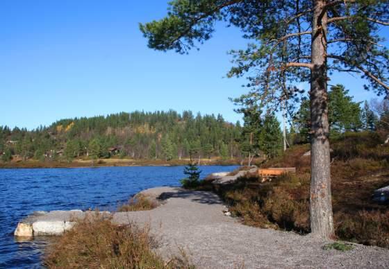 Fishing site Rundatjønn, Bortelid