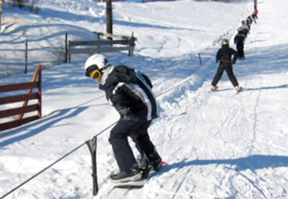 Aasgjerdet Alpine and toboggan run