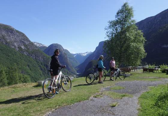 Bike the Fjords - Nærøyfjorden UNESCO world heritage area