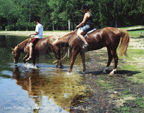 Horses crossing a stream