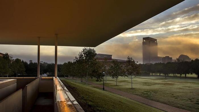 Art Galleries in Rice University