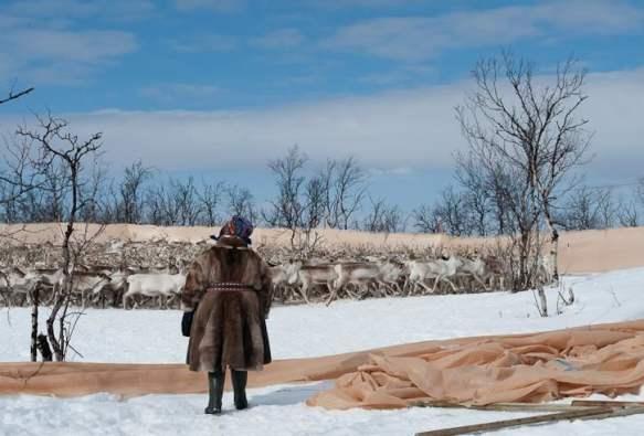 Samiske opplevelser med Turgleder