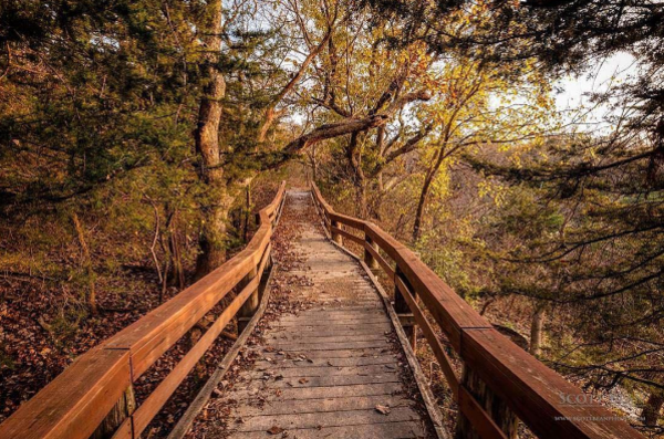Cedar Ridge Trail at Tuttle Creek Lake