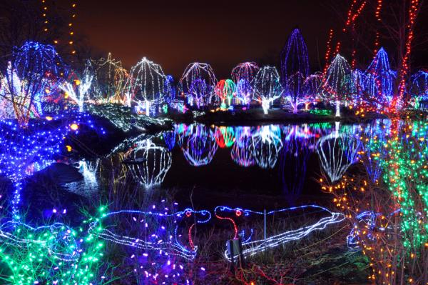 Wildlights at the Columbus Zoo