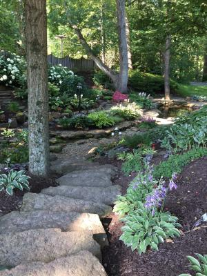 Avon Gardens ravine with rock steps