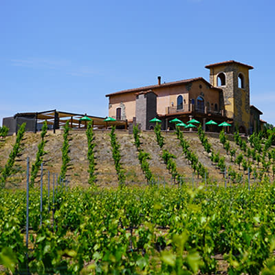 Robert Renzoni Winery and Vineyards