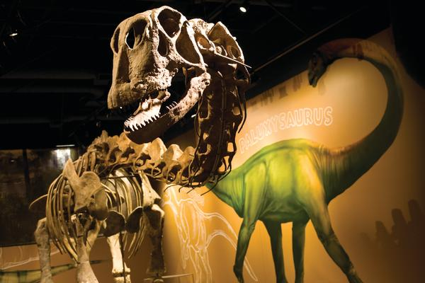 Fort Worth Museum of Science
