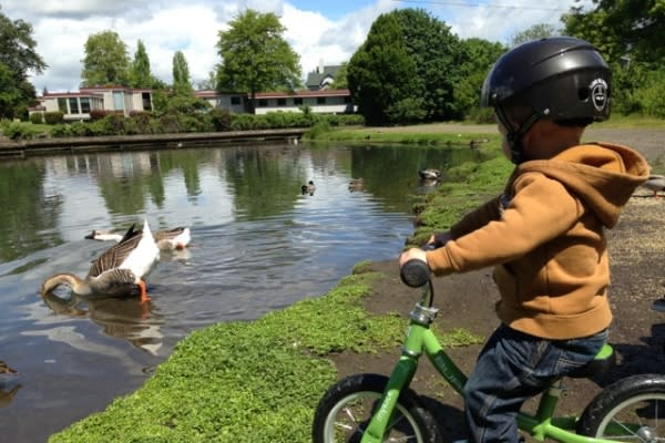 Child Cycling by Park Ducks by Melanie Bennett