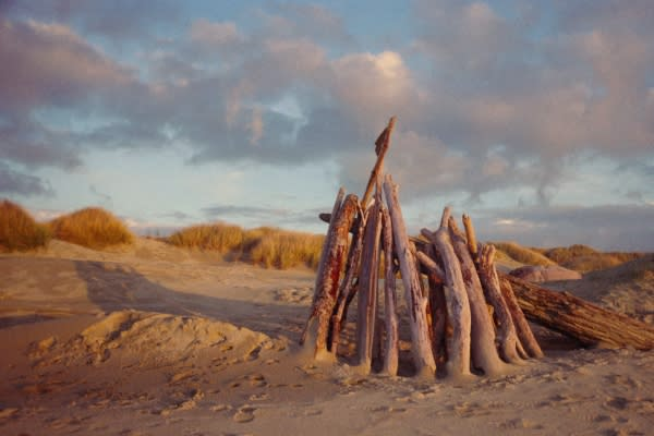 Driftwood Dream Palace on the Oregon Coast by April Dimmick