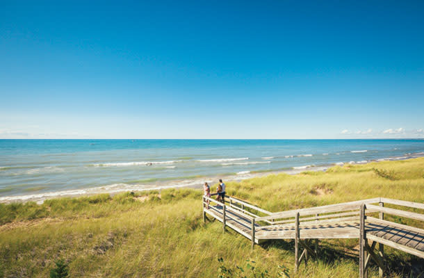 Grand Bend Pinery