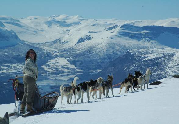 Beito Husky Tours - Dog sledding, winter