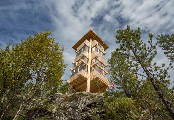 Moose observation tower
