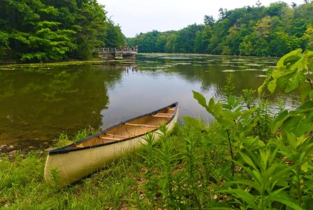 Empty canoe sitting along the edge of a river