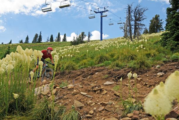 Mountain biking at Schweitzer Mountain Resort