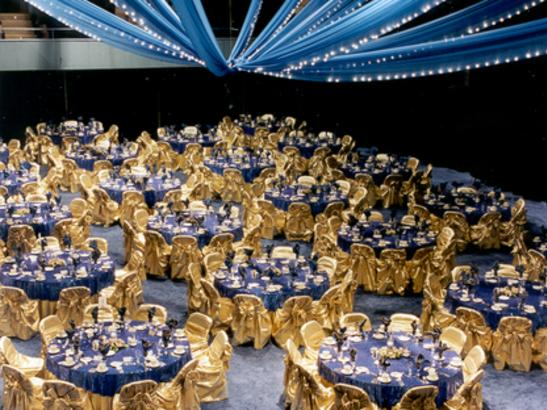 Auditorium set for a large banquet