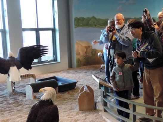 Guests at the National Eagle Center