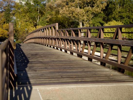 Bridge | credit olivejuicestudios.com