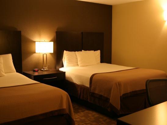Standard Two Queen Guestroom