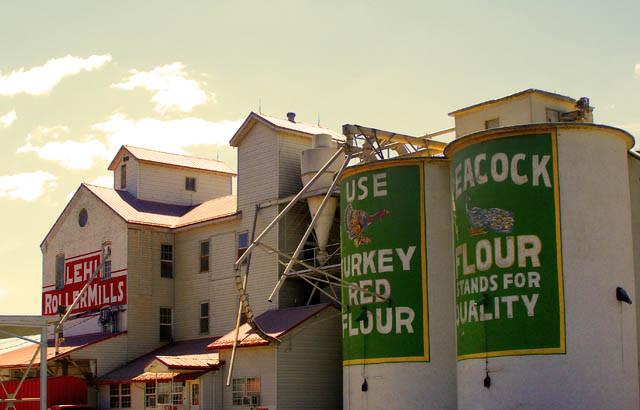 lehi roller mill