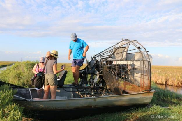 Airboats and Alligators