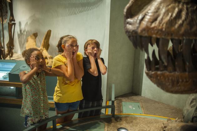 Kids showing fear of dinosaur at the Denver Museum of Nature & Science.
