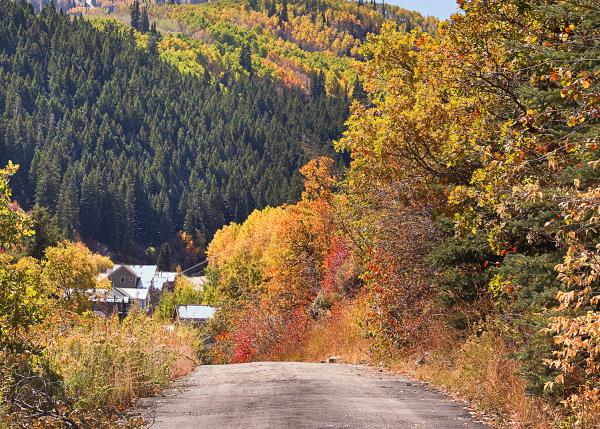 Scenic Drive among trees and mountains in Park City