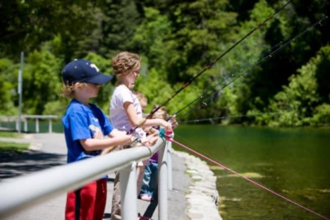 Vivian Park Fishing