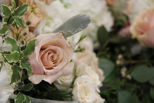Rose from Event Floral