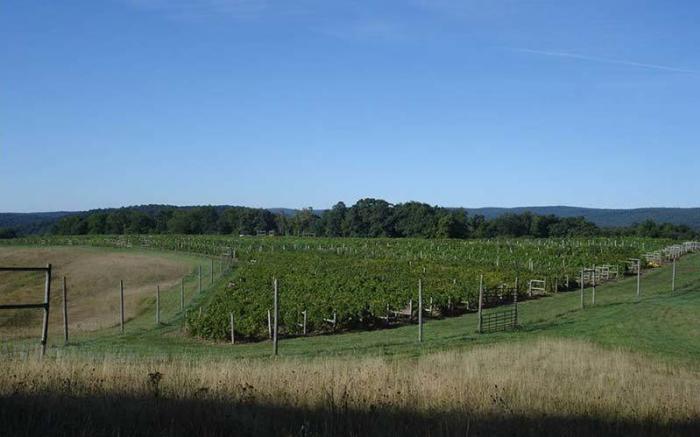 Christian W. Klay Winery