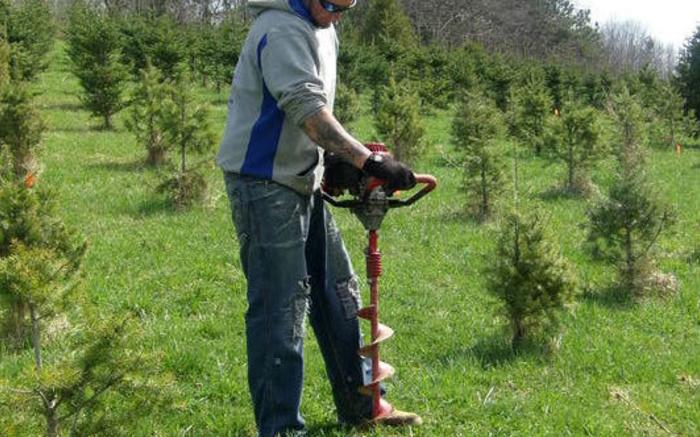 Drilling holes to plant new trees