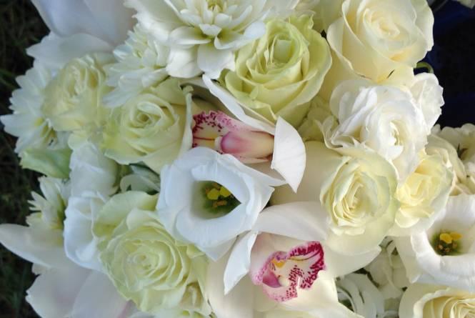 Premier Floral Design and Gift Emporium