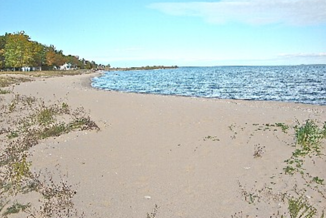 Northport Beach