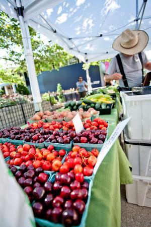 Farmers Market Easton