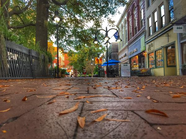 Downtown Mall Fall