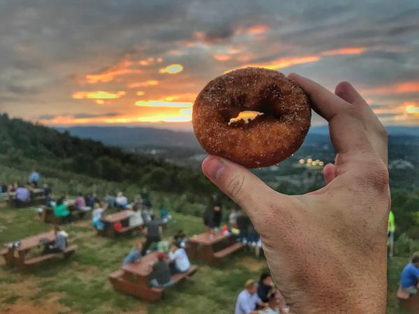 Carter Mountain Orchard Donuts 2