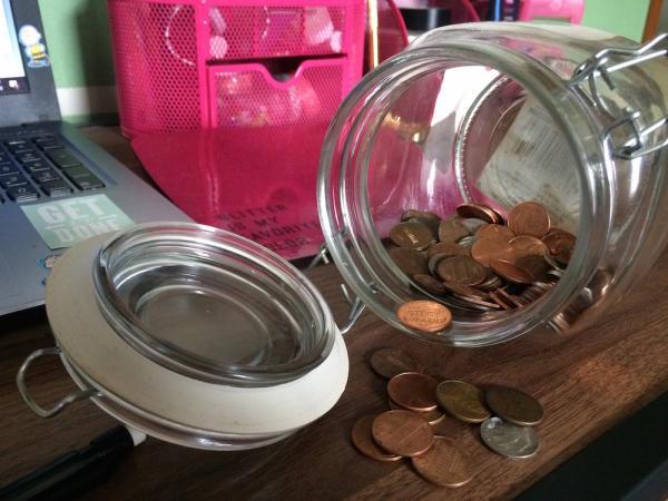 $20 budget pennies
