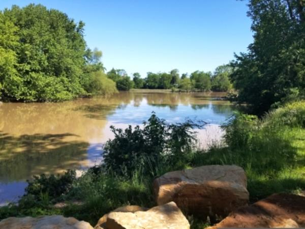 River Greenway View