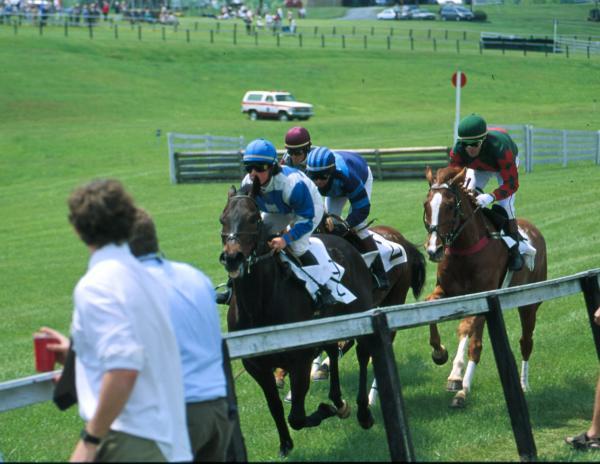 Foxfield Races III