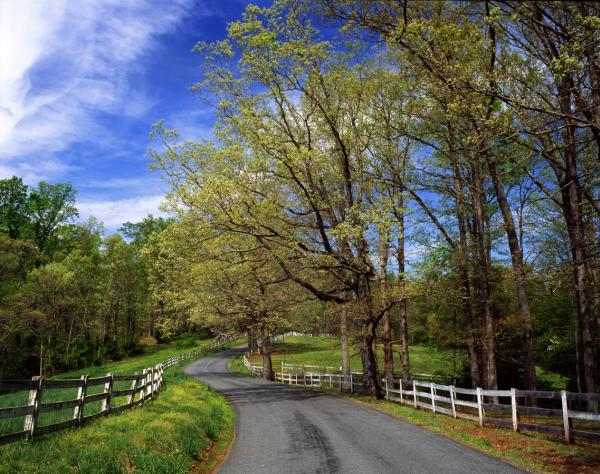 Albemarle County Byway in Early Spring