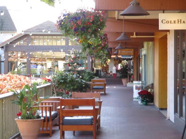 Carmel Plaza Shops