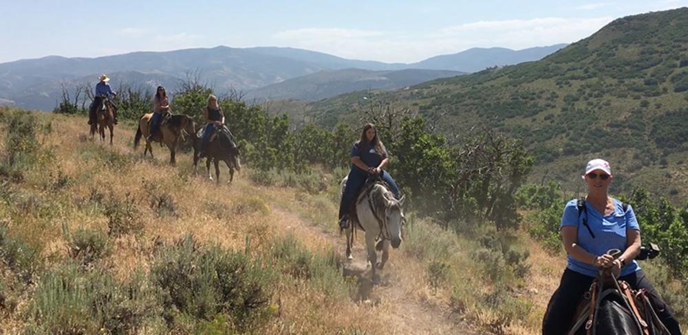 blue sky horse riding
