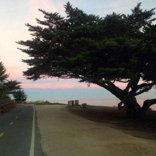 Rec trail Pacific Grove