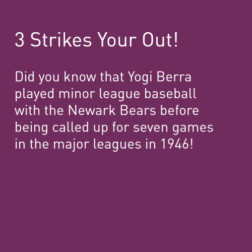 Fun Facts Text - 23