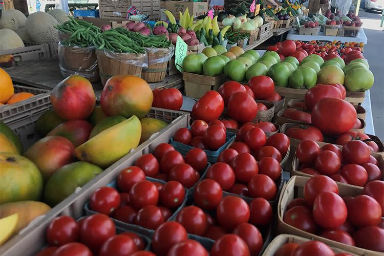 Farmers Market Tomatoes_2