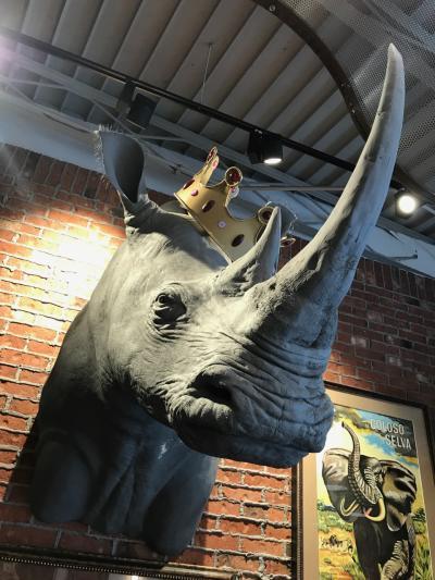 Rhino at Royal Rhino