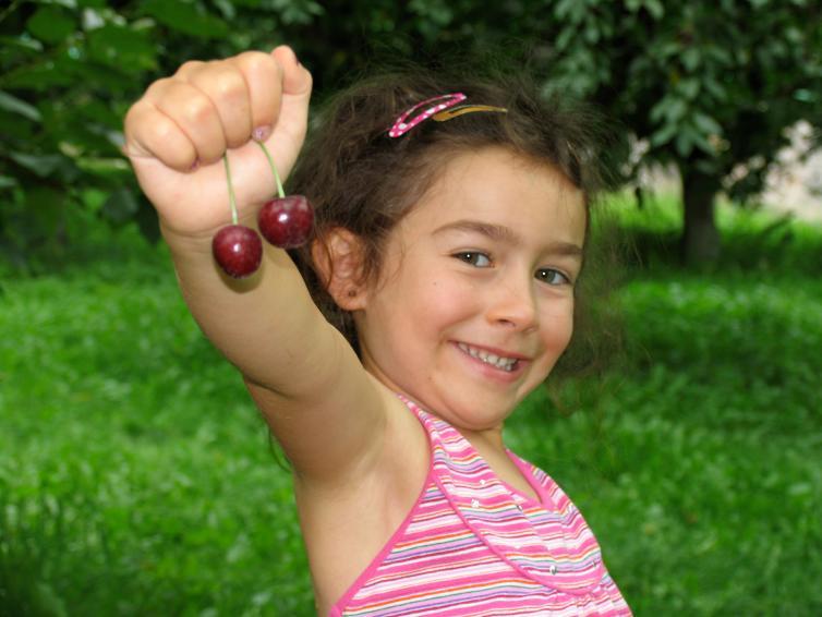 Cam Holds Cherries