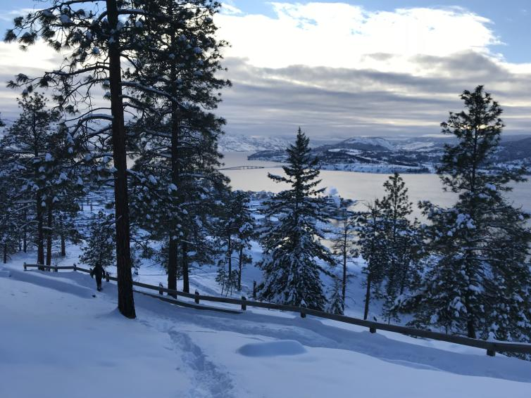 Knox Mountain Snowy Trail